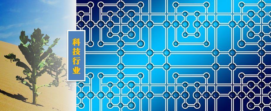 """国内芯片技术交流-RISC-V能否""""重构""""芯片产业格局risc-v单片机中文社区(1)"""